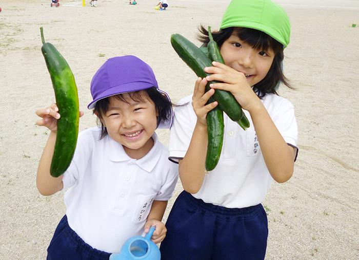 神埼幼稚園